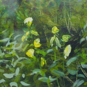 Evening Primroses - Sandra Izard